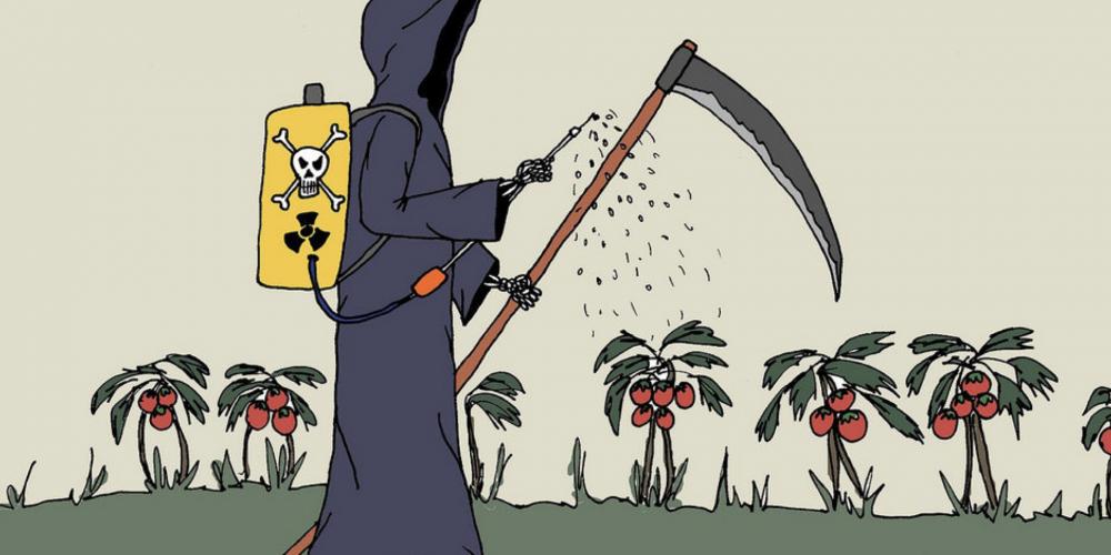 Comissão de Meio Ambiente da Alep realiza audiência pública para debater o uso de defensivos agrícolas